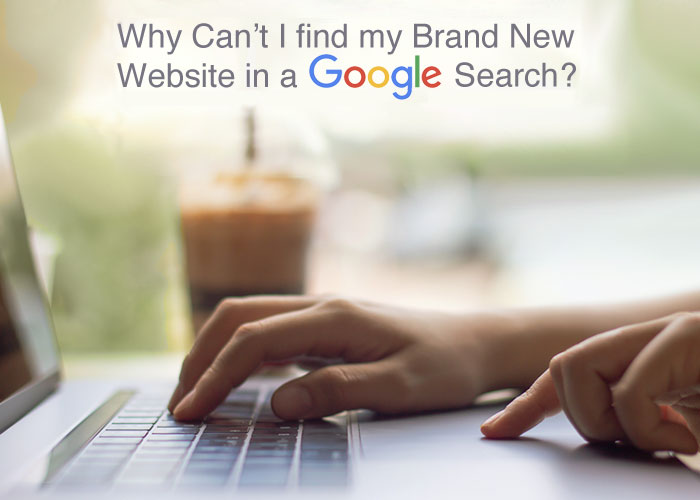 Why can't I find my brand new website in Google search?