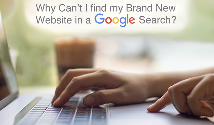 Why Can't I find my Brand New Website in a Google Search
