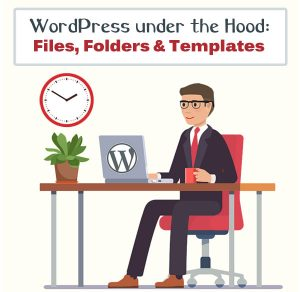 WordPress files, solders and templates